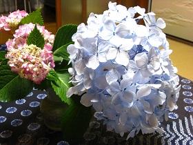 20130622花