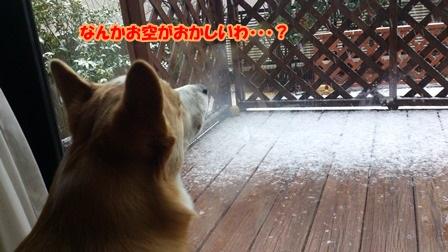お空が何だか変よ!!