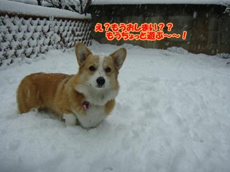 雪って冷たい