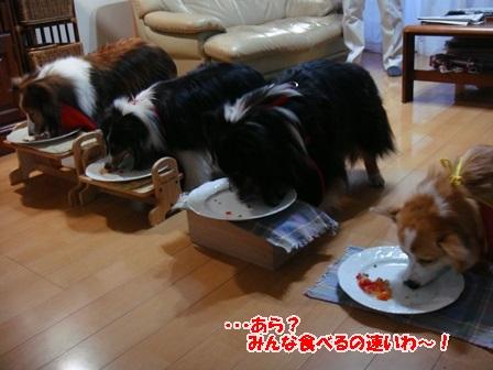 みんな食べるの速いわ!!.