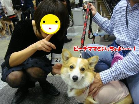 ママとの再会!.