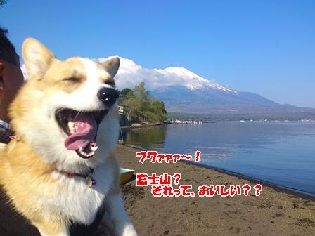 富士山だよ~