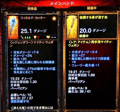 DSC09416.jpg