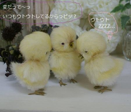 b411_20120526171521.jpg