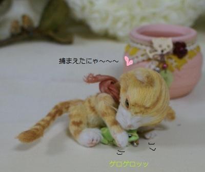 b534_20120719113554.jpg