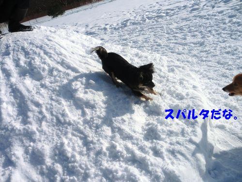 2-2_20130127181138.jpg