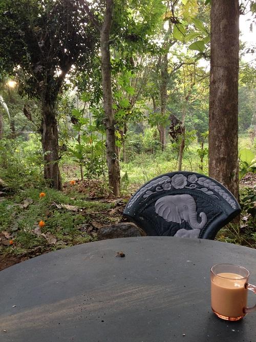 シリプラの庭