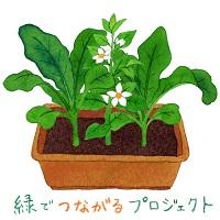 logo_midori_0614_small.jpg