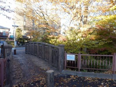西東京「喫茶館くすの樹」5