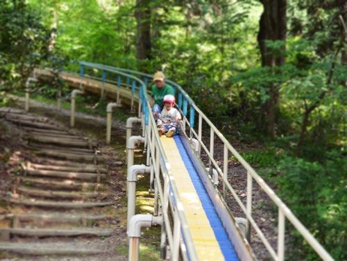 加茂山公園2