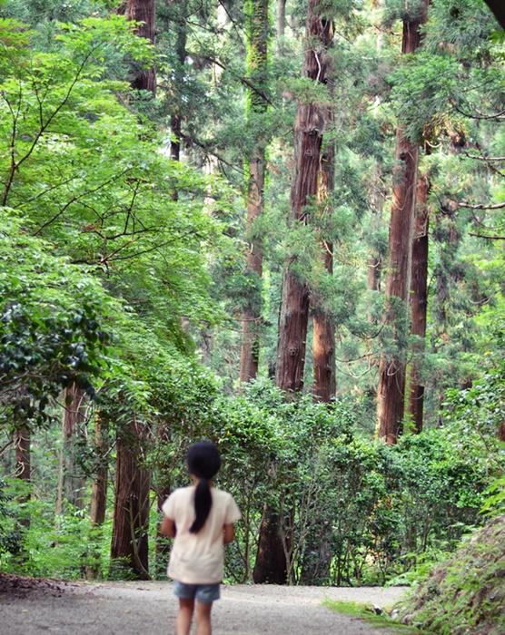 加茂山公園5