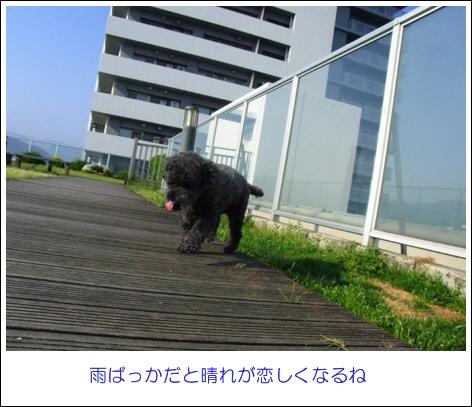 RIMG7599.jpg
