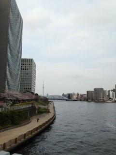 shinkawapark.jpg