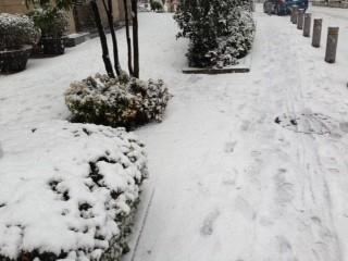 snow_20130114155441.jpg