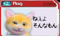 Rag様作 うざい猫