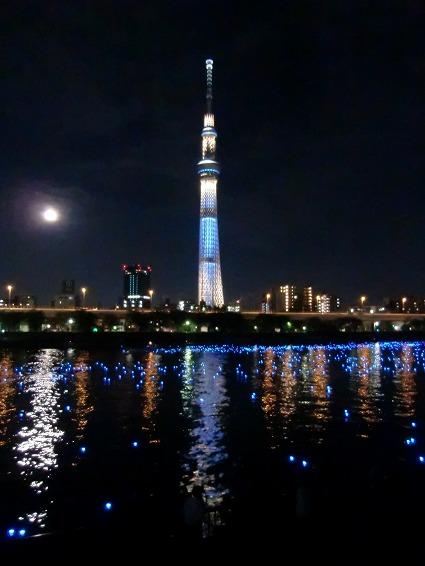 スカイツリーと東京ホタル