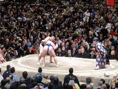 大相撲 初場所の取り組み