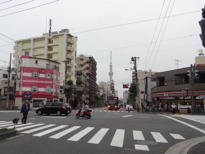 東京・下町、山谷の泪橋からのスカイツリー