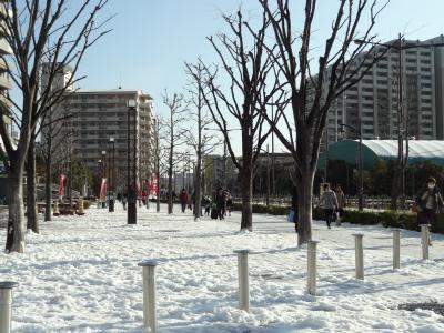 南千住・高層からの雪景色♪