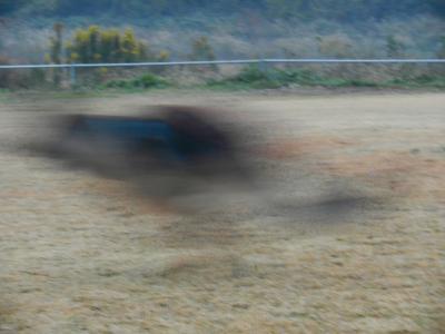 kousoku3_convert_20121124100520.jpg