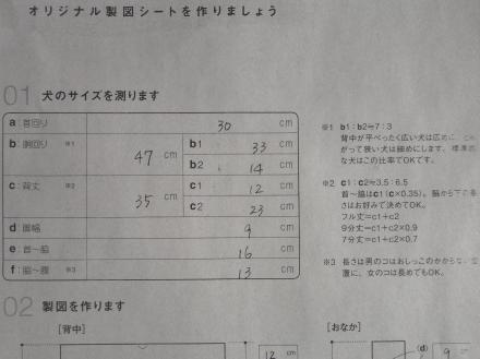 DSC09910_convert_20130129064123.jpg