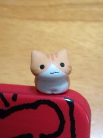 cat1_b