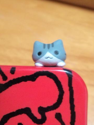 cat2_b