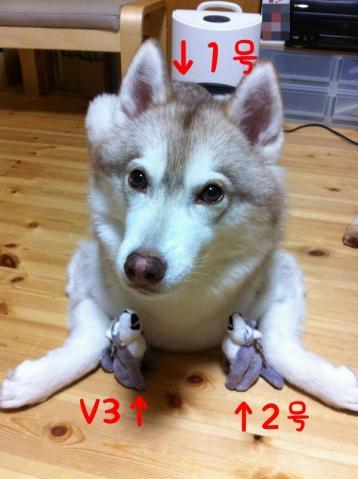 12_7_24_friends.jpg