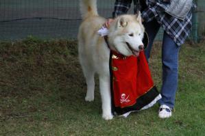 2012 10月HUS☆HUG 412