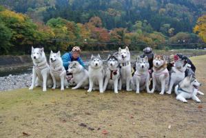 2012 11月白川郷&高山 005