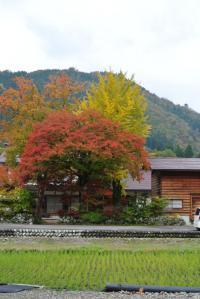 2012 11月白川郷&高山 056