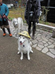 2012 11月白川郷&高山 263