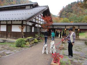 2012 11月白川郷&高山 285