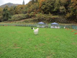 2012 11月白川郷&高山 288