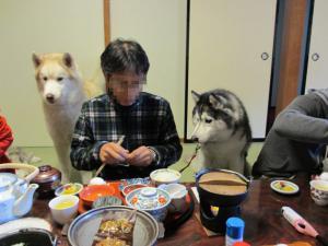 2012 11月白川郷&高山 317