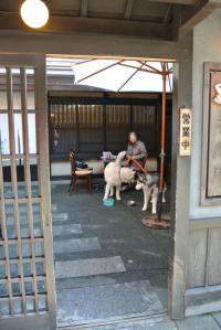 2012 11月白川郷&高山 155