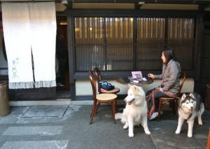 2012 11月白川郷&高山 152