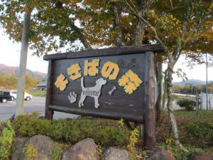 2012 11月白川郷&高山 363