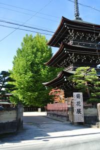 2012 11月白川郷&高山 156