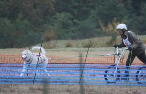 2012 11月ギグレース2 260