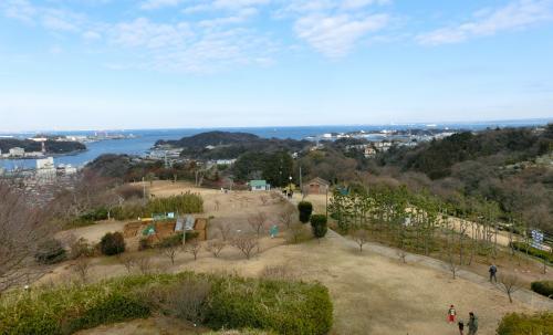 田浦の梅園。。。景色