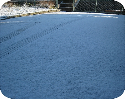 今朝の雪化粧