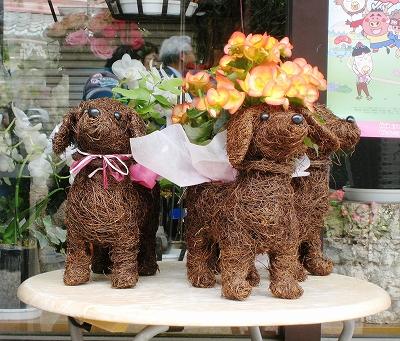 草津宿周辺の花屋さん