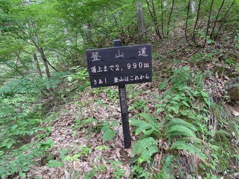 B120628-06.jpg