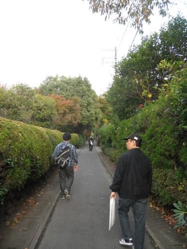 竹林の道2