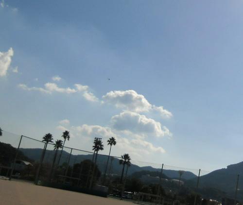 そこら辺を飛んでます。