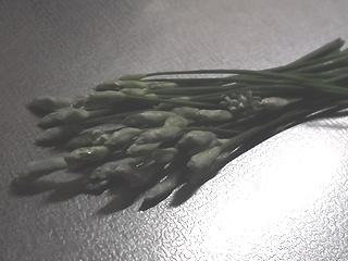 花にら02