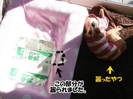 DSCN1901_20121229231005.jpg
