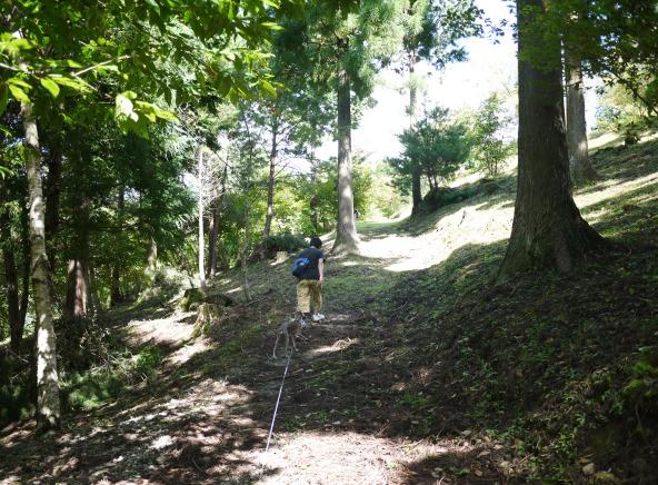 ホントは龍馬脱藩の道や遊歩道をゆっくり歩きたかった