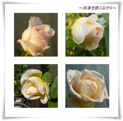 阮ォ荵ダconvert_20121023103025